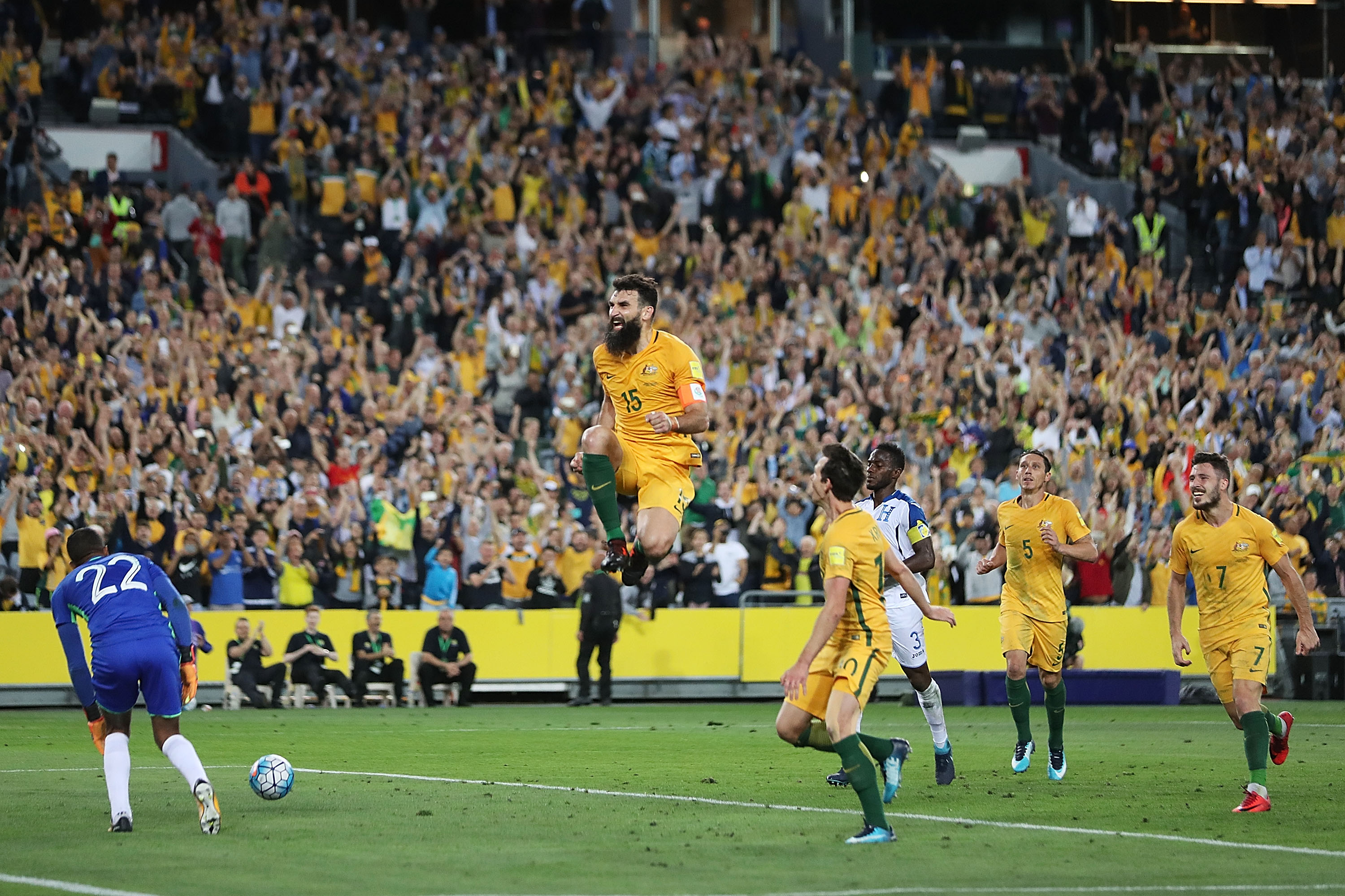 Mile Jedinak celebrates