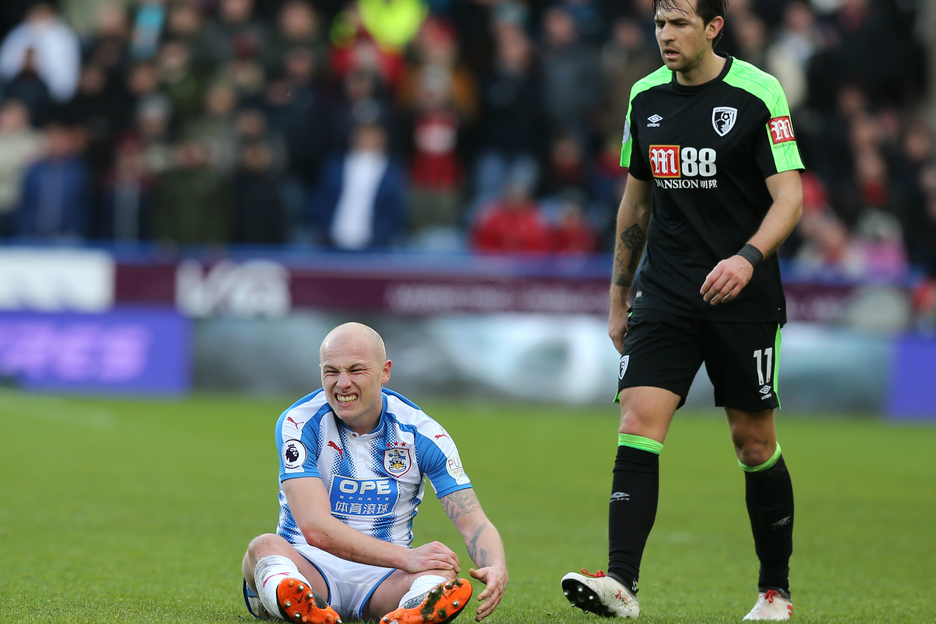 Aaron Mooy in pain after his clash of knees against Bournemouth.