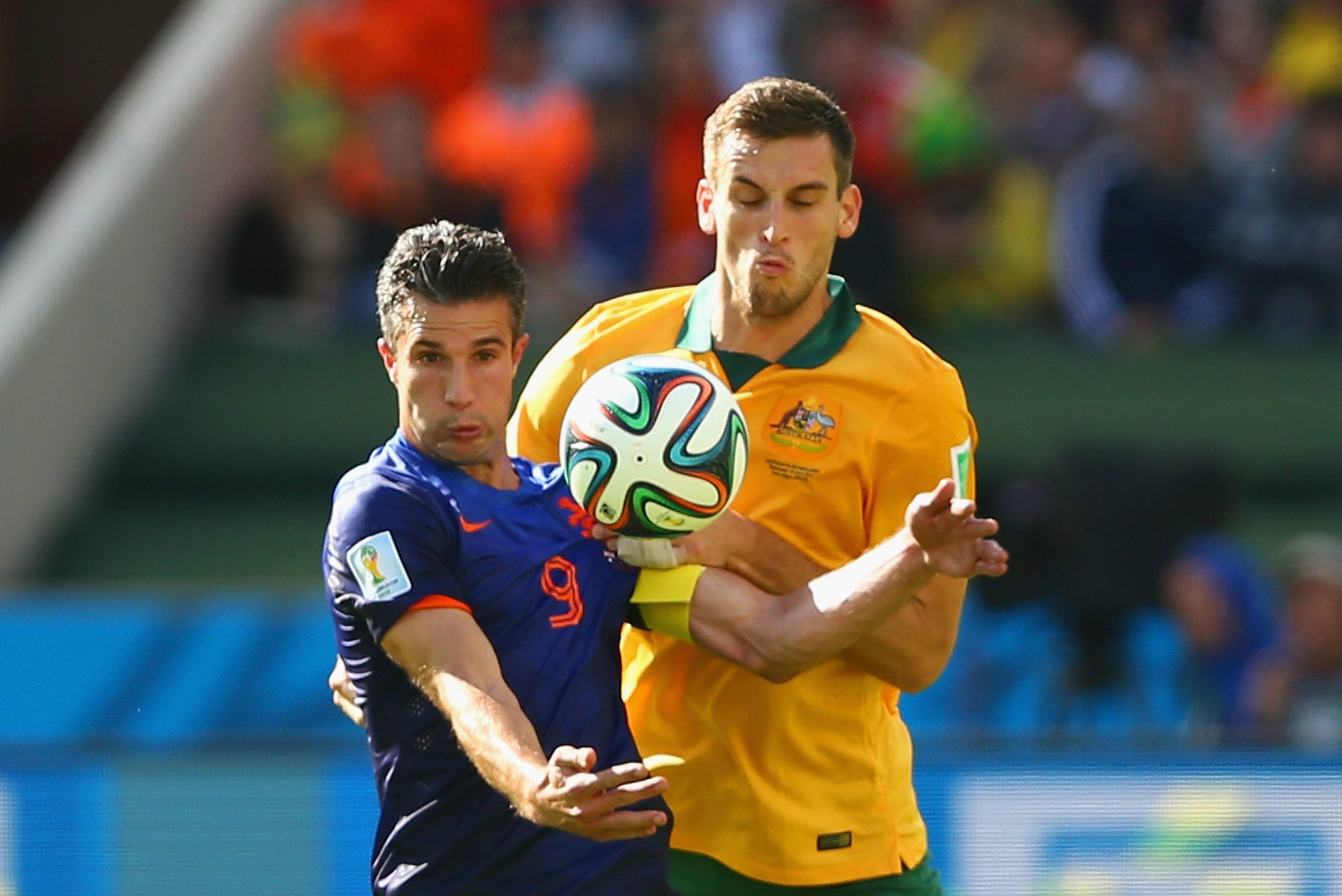 Spiranovic does battle with the Netherlands' Robin van Persie at the 2014 World Cup.