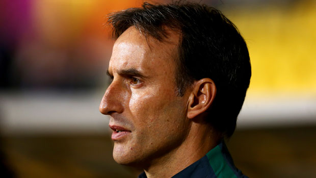 Olyroos coach Aurelio Vidmar watches on intently from the sideline.