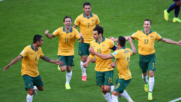 Socceroos players celebrate after Mile Jedinak's goal against Holland at the 2014 FIFA World Cup.