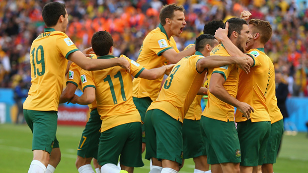 Socceroos players celebrate Mile Jedinak's goal against the Netherlands at the 2014 FIFA World Cup.