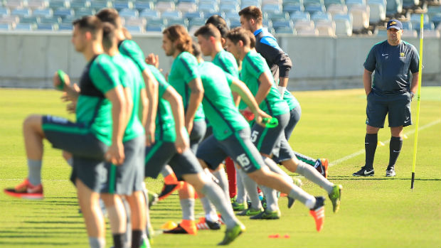 Coach Ange Postecoglou presides over Socceroos training in Canberra.