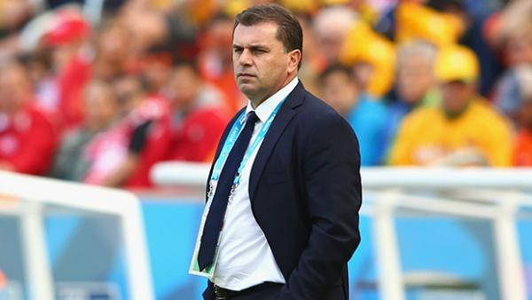 Ange Postecoglou looks on during Australia's 3-2 loss to the Netherlands.
